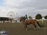 New Jersey State Fair 2013