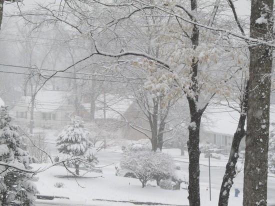 Snow March 20 2015